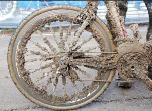 Muddy-624x457
